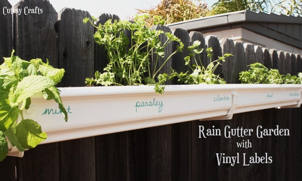 Rain gutter herb garden with vinyl labels.
