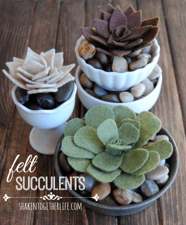 Felt Succulents from Shaken Together
