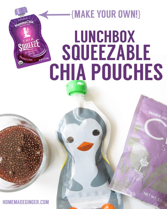 Lunchbox Squeezable Chia Pouches by Homemade Ginger