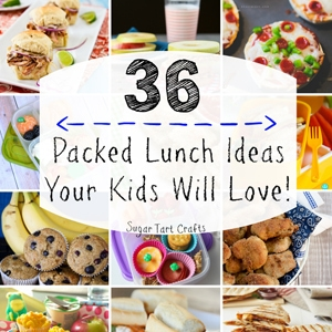 36 Packed Lunch Ideas
