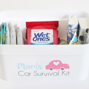 Mom's Car Survival Kit
