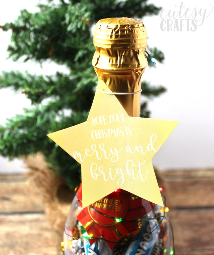 MARS® Celebrations® Bottles Neighbor Gift Idea