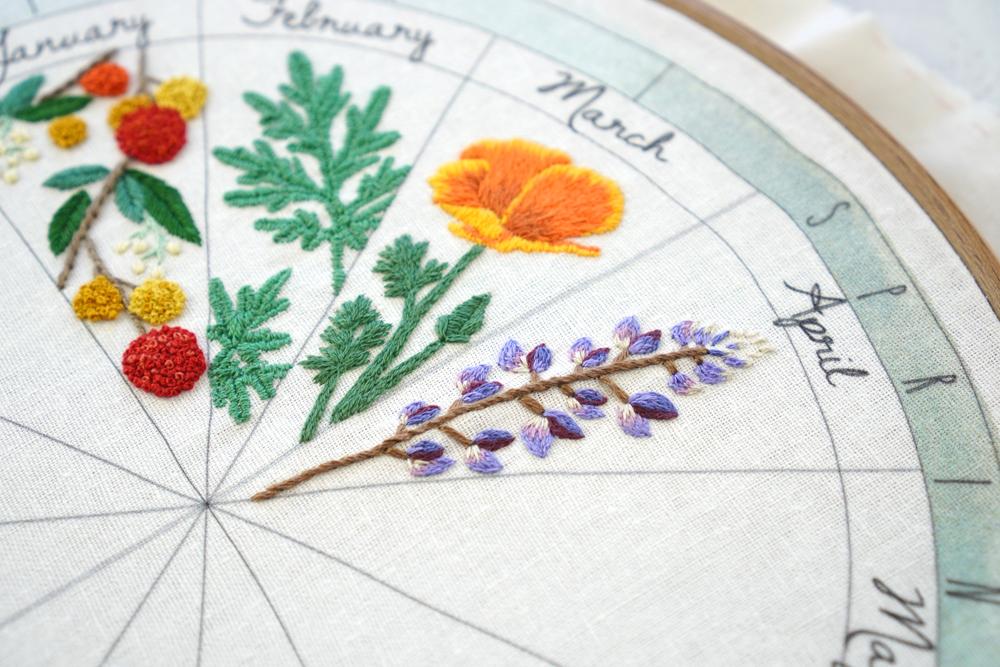 phenology wheel flowers